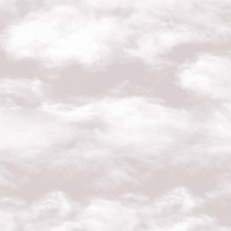 Vliestapete 'Wolken' hellgrau/weiß
