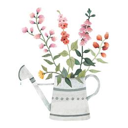 Queyran Wildblumen