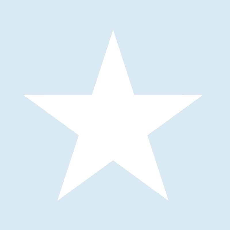 Vliestapete 'XL-Stern' hellblau/weiß