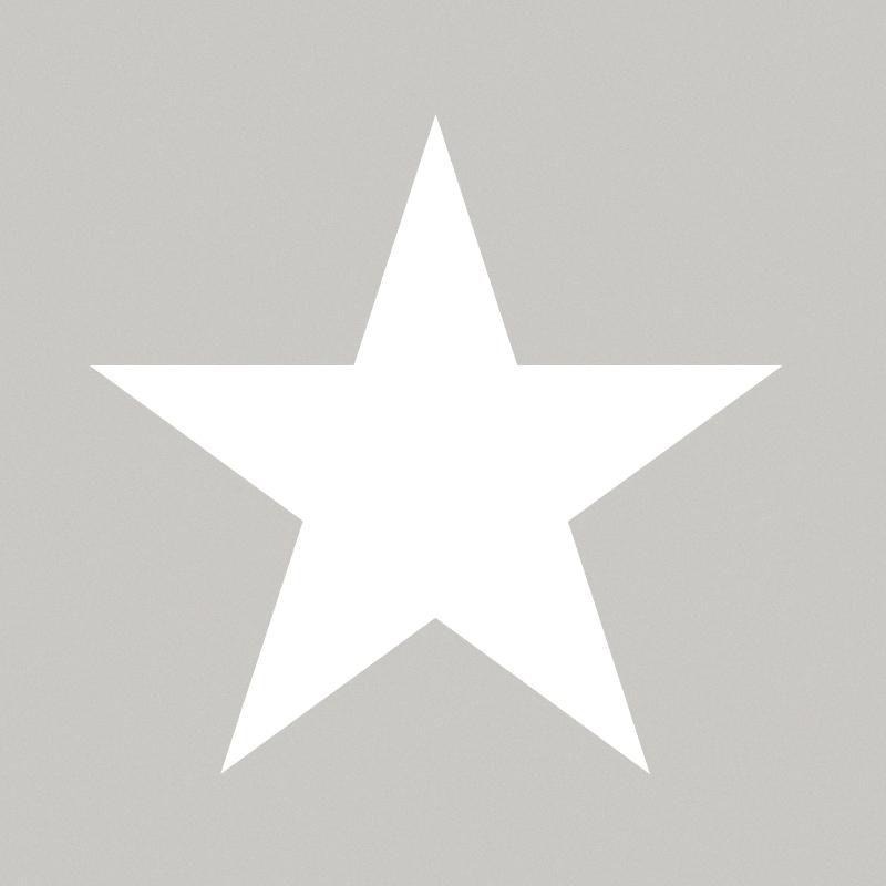 Vliestapete 'XL-Stern' grau/weiß