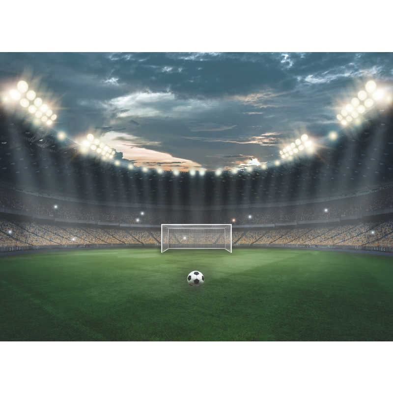 Fototapete 'Fußball' 360x265cm