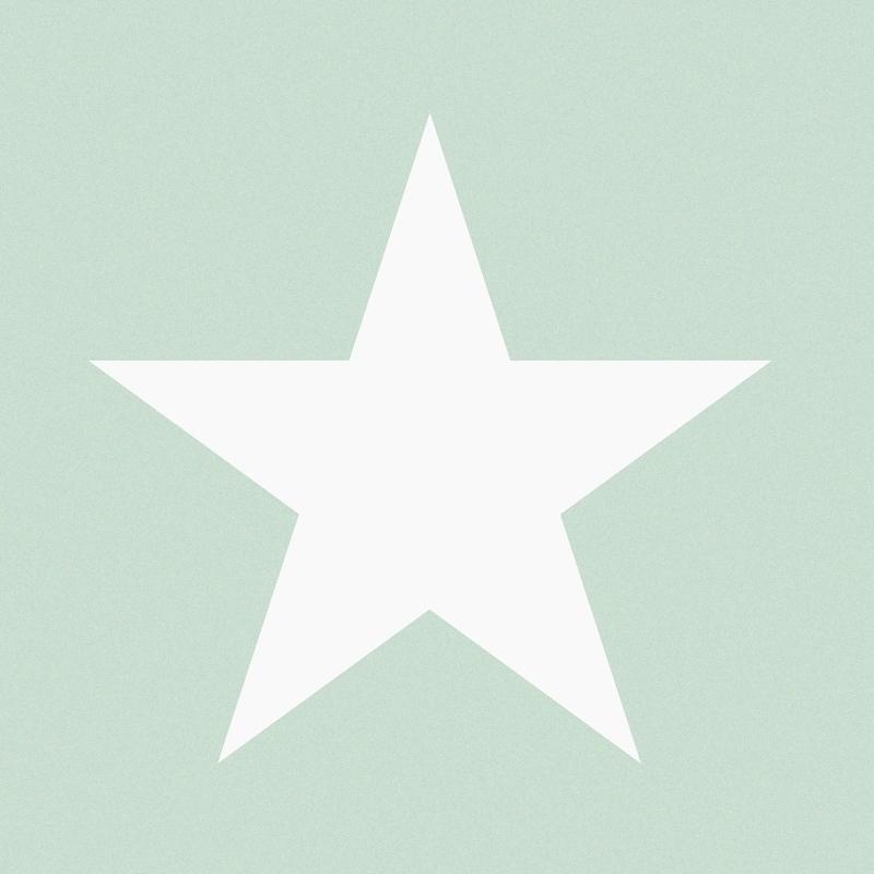 Vliestapete 'XL-Stern' mint/weiß