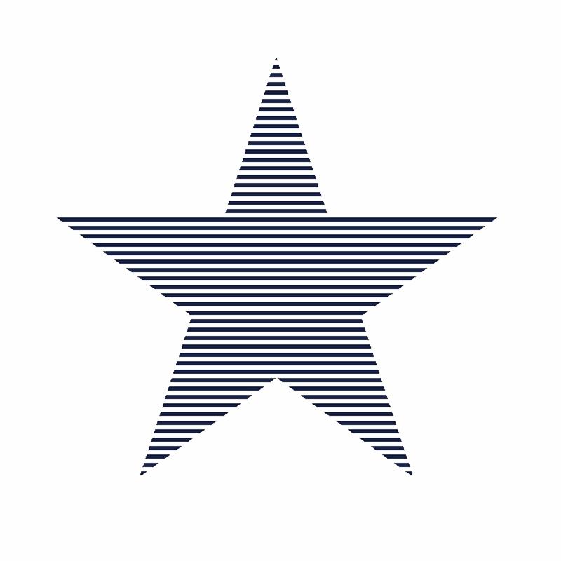 Vliestapete 'XL-Stern' weiß/marine