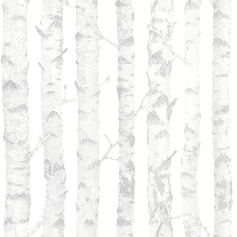 Vliestapete 'Birkenbäume' grau/silber